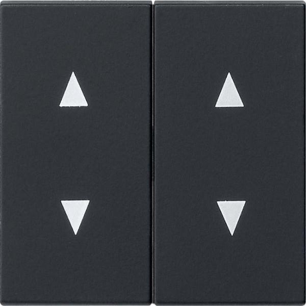 Gira 1150005 System 55 Wippen mit Pfeilsymbolen Schwarz matt