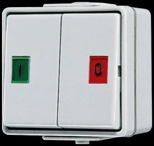 Jung AP/WD Doppeltaster 2 Wechsler 639 W mit Symbolsortiment