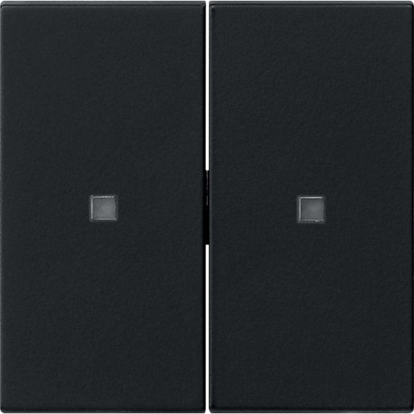 Gira 5369005 System 3000 System 55 Wippe 2-fach unbedruckt Schwarz matt