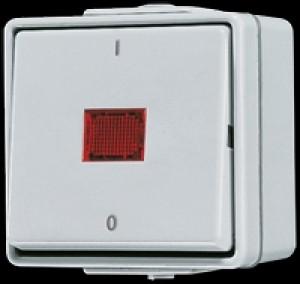 Jung AP/WD Kontrollausschalter 2-polig 602KOW