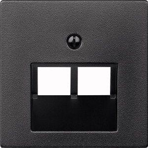 MERTEN 298014 Zentralplatte für UAE-Einsatz, 2fach Anthrazit, matt