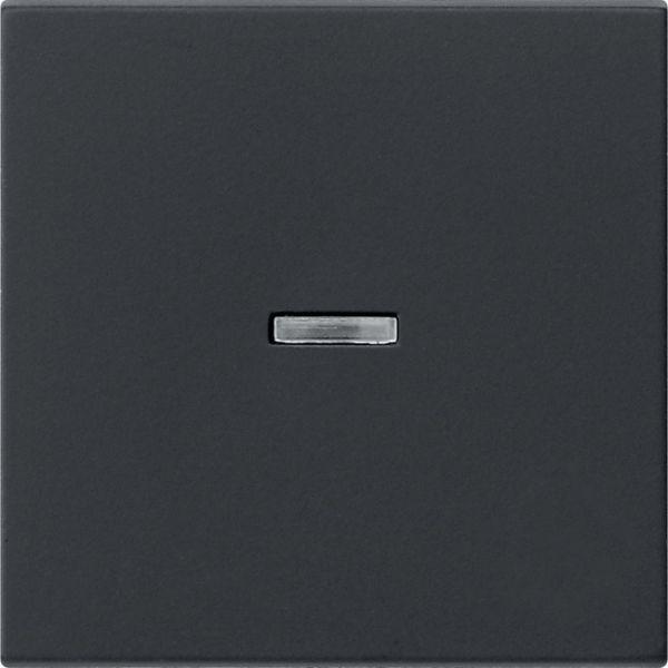 Gira 0290005 System 55 Kontrollwippe Schwarz matt