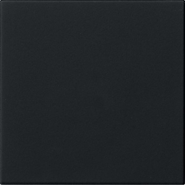 Gira 5360005 System 3000 System 55 Bedienaufsatz Standard Schwarz matt