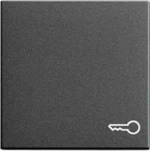 Gira 028728 Wippe mit Symbol Tuer fuer Wippschalter und Wipptaster Anthrazit
