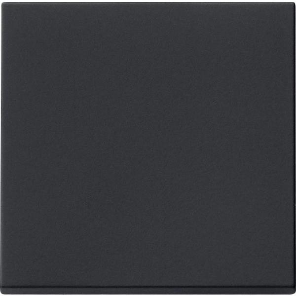 Gira 0296005 System 55 Wippe Schwarz matt