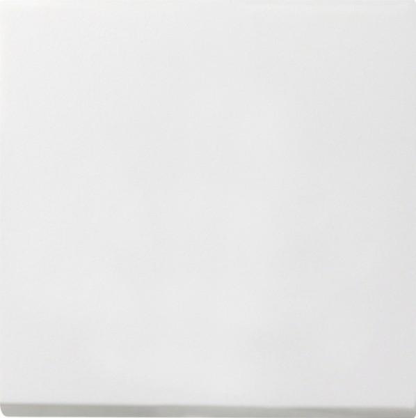 Gira 0268112 Blindabdeckung mit Tragring Reinweiß glänzend
