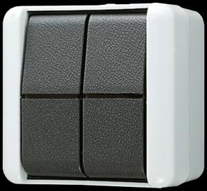 JUNG 839W Doppel-Taster