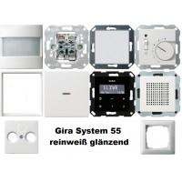 1-Familienhaus Paket reinweiß glänzend System 55 Gira